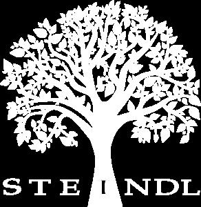 Logo Steindl